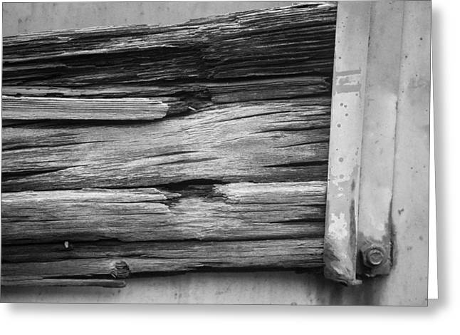 Weathered Wood Greeting Card by Toni Hopper