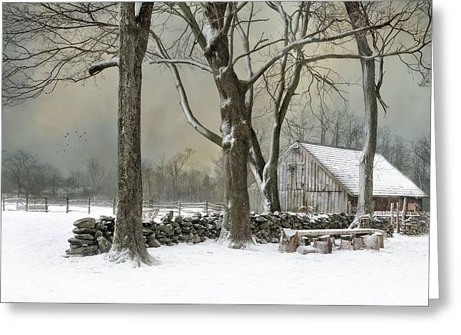 Stonewall Greeting Cards - Weathering Greeting Card by Robin-lee Vieira