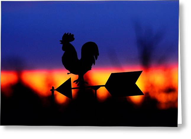 Weathervane Greeting Cards - Weathervane At Sunset Greeting Card by Valarie Davis