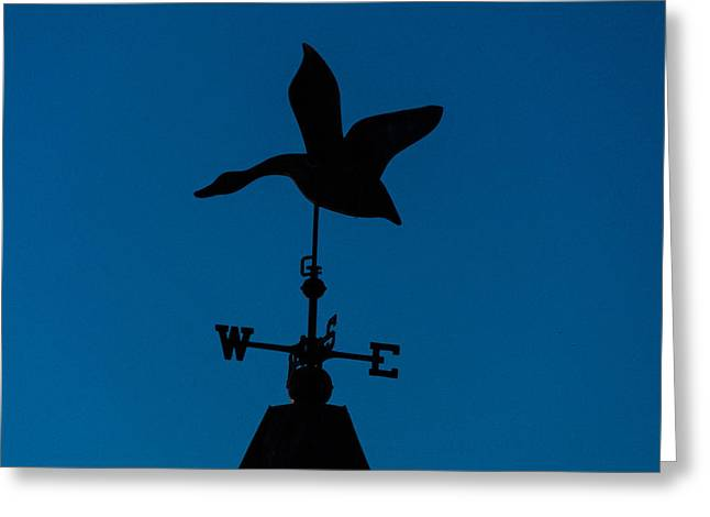 Weathervane Greeting Cards - Weathervane Greeting Card by Kathy Liebrum Bailey