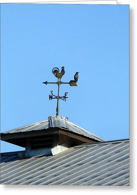 Weathervane Greeting Cards - Weathervane Greeting Card by Nicki Bennett