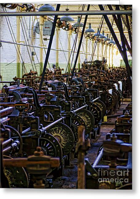 Textile Museum Greeting Cards - Weavers Nest Greeting Card by Gillian Singleton