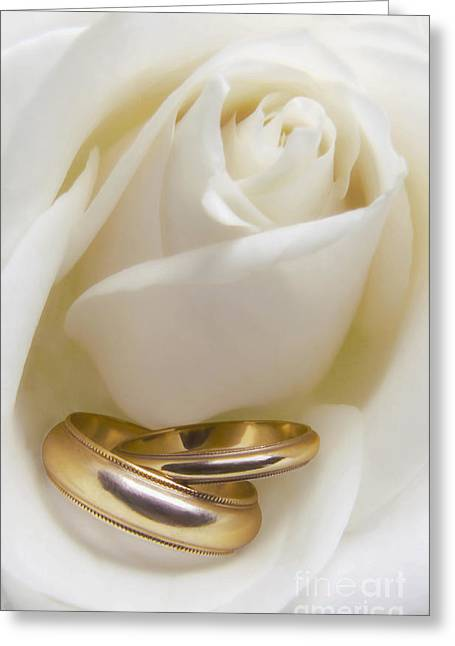 Gold Ring Greeting Cards - Wedding Rose Greeting Card by Diane Diederich
