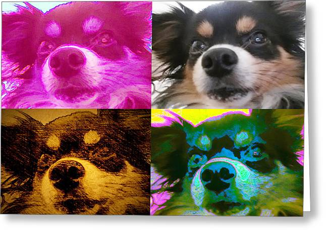 House Pet Greeting Cards - Wedgie Four Greeting Card by Del Gaizo