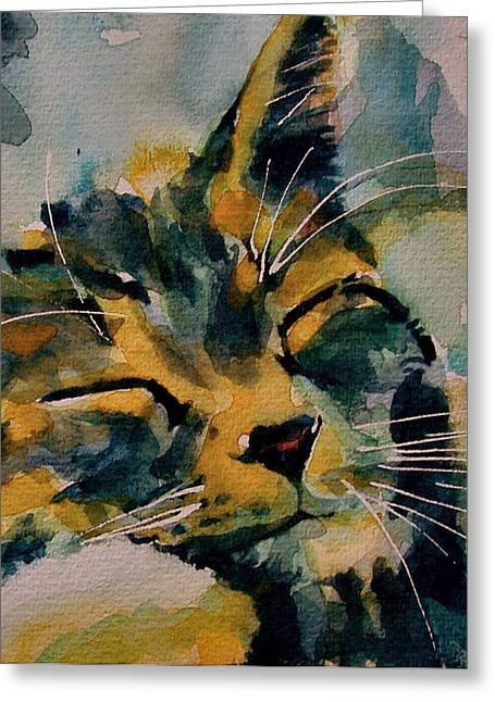 Tabby Greeting Cards - Weeeeeee Sleepee Greeting Card by Paul Lovering