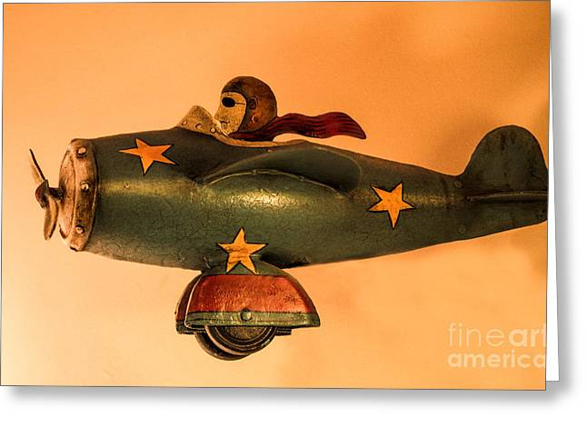 Tin Planes Greeting Cards - Weeeeeeeeeeeeee Greeting Card by Linsey Williams