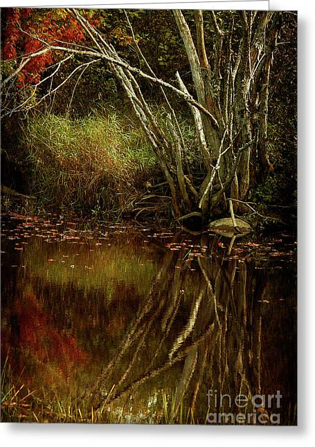 Cindi Ressler Greeting Cards - Weeping Branch Greeting Card by Cindi Ressler