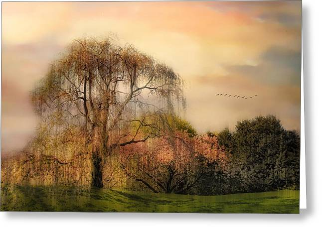 Backlit Greeting Cards - Weeping Cherry Tree Greeting Card by Jessica Jenney