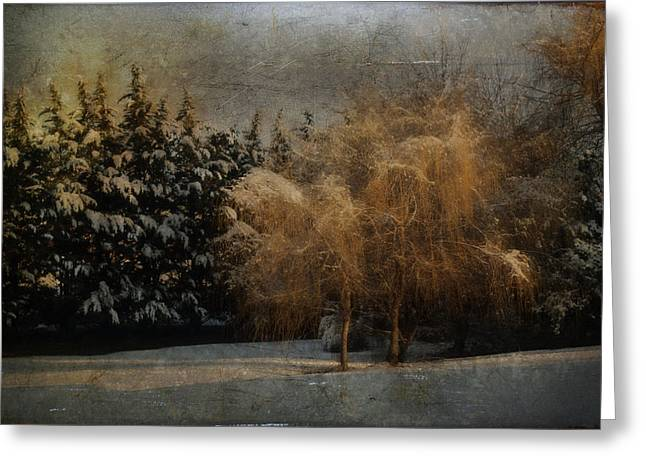 Snow Tree Prints Greeting Cards - Weeping In Winter Greeting Card by Kathy Jennings