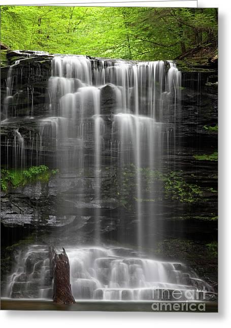 Weeping Wilderness Waterfall Greeting Card by John Stephens