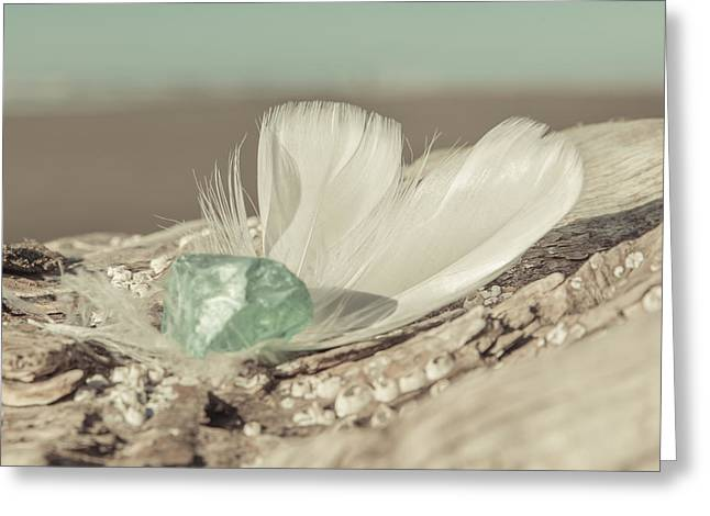 Weighted Feathers Greeting Card by Lucid Mood