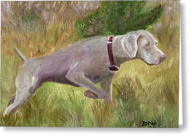 Best Sellers -  - Mj Greeting Cards - Weimaraner Point Greeting Card by Mary Jo  Zorad