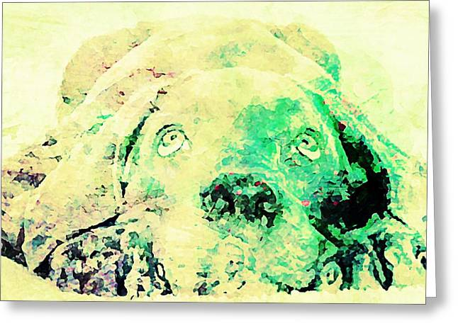 Puppies Mixed Media Greeting Cards - Weimaraner Puppy Greeting Card by Jennifer Choate