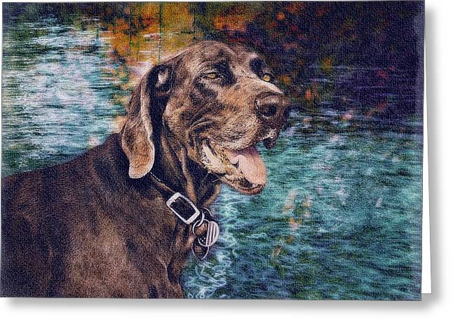 Pets Greeting Cards - Weimaraner Greeting Card by Tisha McGee