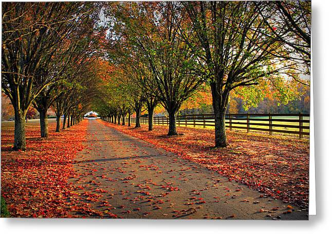 Bradford Greeting Cards - Welcome Home Greeting Card by Reid Callaway