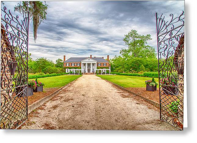 Boone Hall Greeting Cards - Welcome Greeting Card by Karol  Livote