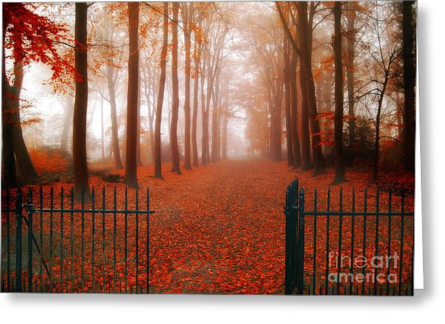 Misty Landscape Greeting Cards - Welcome Greeting Card by Photodream Art