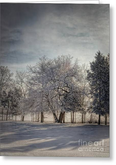 Winter Scenes Rural Scenes Greeting Cards - Welcome Sunshine Greeting Card by Pamela Baker