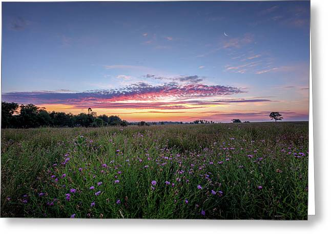 Summer Greeting Cards - Welcome To My Morning Greeting Card by Bill  Wakeley