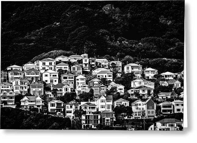 Harding Greeting Cards - Wellington hillside Greeting Card by Constance Fein Harding