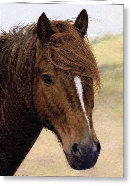 Wild Horse Greeting Cards - Welsh Pony Painting Greeting Card by Rachel Stribbling