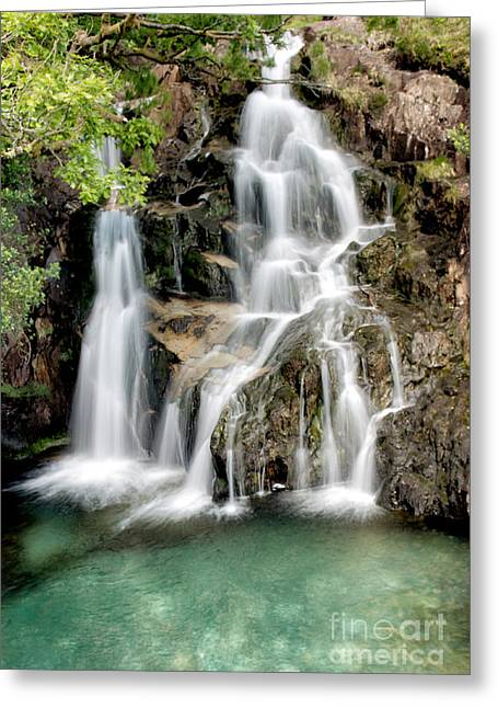 Rapids Greeting Cards - Welsh Waterfall Greeting Card by Adrian Evans