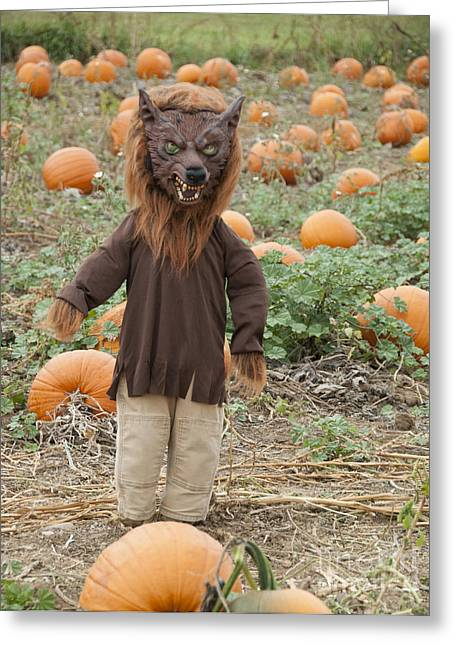 Frightful Greeting Cards - Werewolf in the Pumpkin Patch Greeting Card by Juli Scalzi