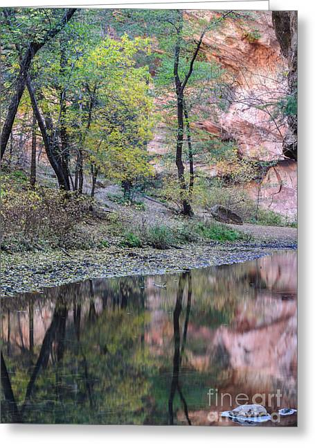 West Fork Greeting Cards - West Fork Reflection Greeting Card by Tamara Becker