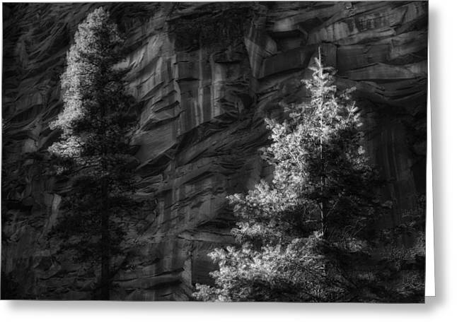 West Fork Greeting Cards - West Fork Rock Face Number Three Black and White Greeting Card by Bob Coates