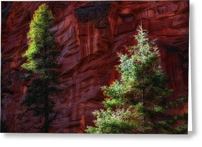 West Fork Greeting Cards - West Fork Rock Face Number Three Greeting Card by Bob Coates