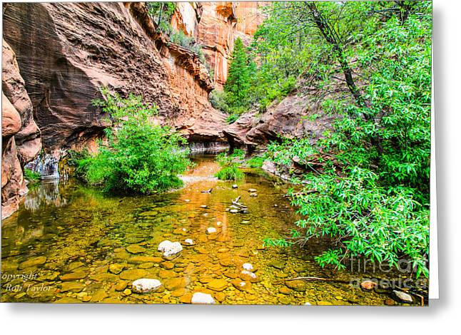 West Fork Greeting Cards - West Fork Trail Sedona Arizona Greeting Card by Ron Taylor