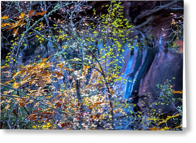 West Fork Greeting Cards - West Fork Wall Greeting Card by Brian Lambert