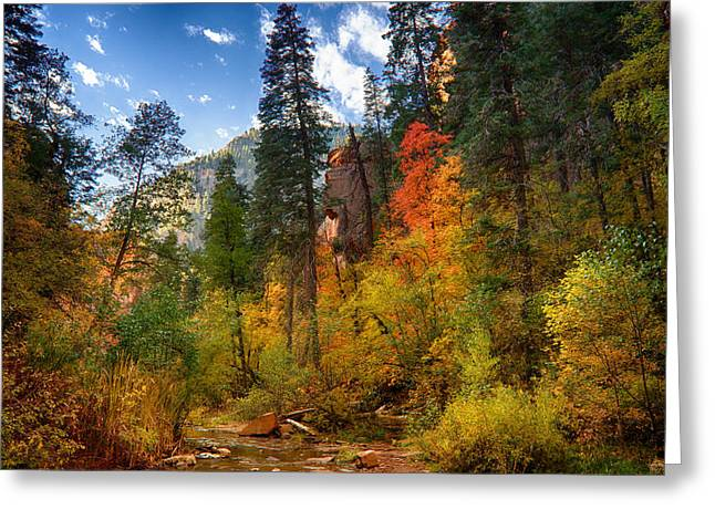 West Fork Greeting Cards - West Fork Wonders  Greeting Card by Saija  Lehtonen