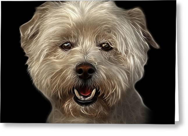 Maltese Mixed Media Greeting Cards - West Highland Terrier Mix - 8674 - BB Greeting Card by James Ahn