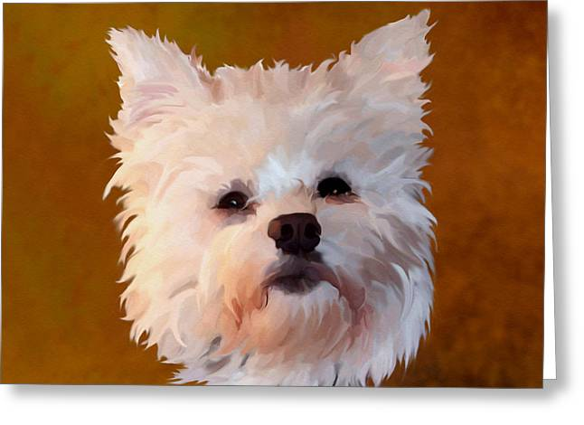 Westie Digital Art Greeting Cards - West Highland White Greeting Card by Bamalam  Photography