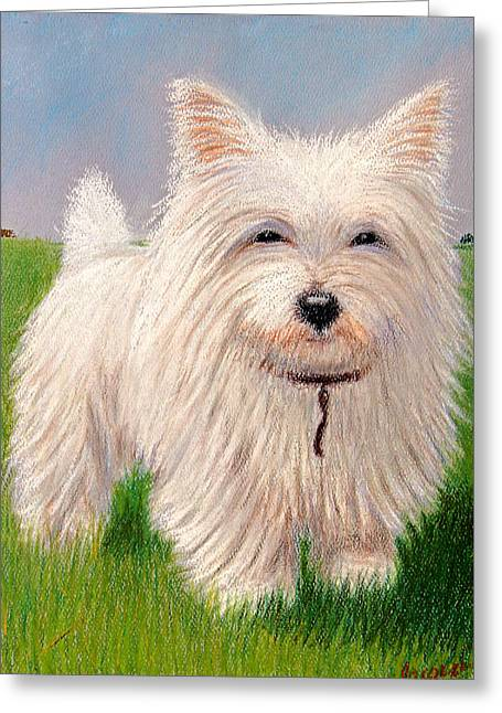 Puppies Pastels Greeting Cards - West Highland White Terrier Greeting Card by Jacqueline Barden