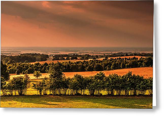 Gora Greeting Cards - West Mazury in Poland Landscape View 2 Greeting Card by Julis Simo