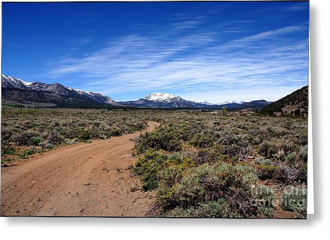 Special Moment Greeting Cards - West of The Sierra Nevada  Greeting Card by Thomas Bomstad