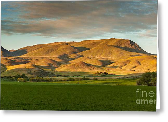 Treasure Valley Greeting Cards - West Side Of Squaw Butte Greeting Card by Robert Bales