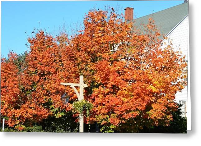 Mud Season Greeting Cards - West Street Fall Colors Greeting Card by Lena Hatch