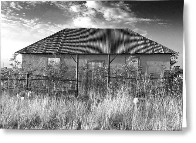 Nikon D80 Greeting Cards - West Texas Decay Greeting Card by Sonja Quintero