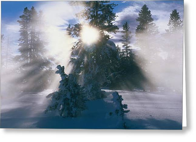 Shining Light Greeting Cards - West Thumb Geyser Basin Yellowstone Greeting Card by Panoramic Images