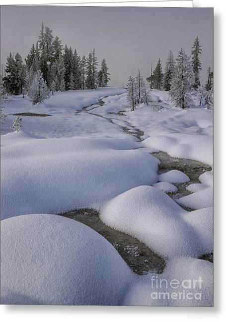 Runoff Greeting Cards - West Thumb Snow Pillows II Greeting Card by Sandra Bronstein