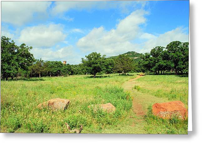 Mickey Harkins Greeting Cards - West Trail Greeting Card by Mickey Harkins