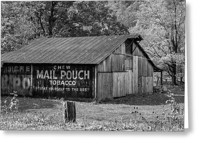 Chewing Tobacco Greeting Cards - West Virginia Barn monchrome Greeting Card by Steve Harrington