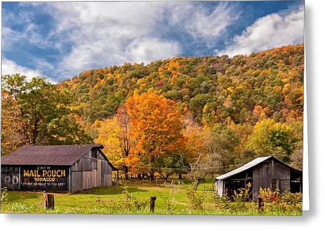 Chewing Tobacco Greeting Cards - West Virginia Barns  Greeting Card by Steve Harrington
