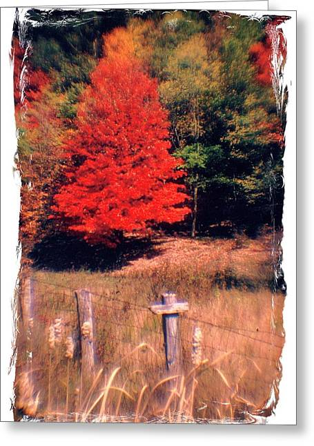 Pendleton County Greeting Cards - West Virginia Country Roads - Autumn Colorfest No. 1 - Germany Valley Pendleton County WV Greeting Card by Michael Mazaika