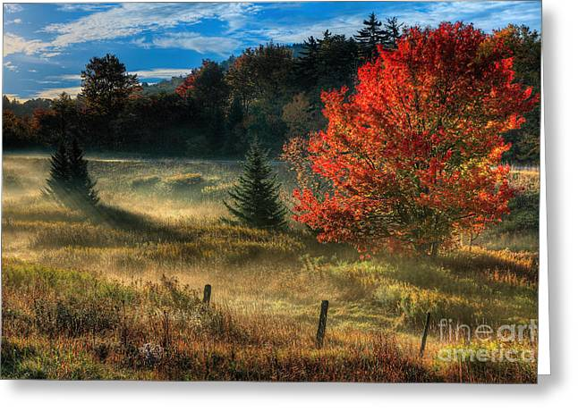 West Virginia Fall Sunrise I Greeting Card by Dan Carmichael