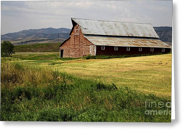 West Country Greeting Cards - Western Barn Montana Greeting Card by Edward Fielding