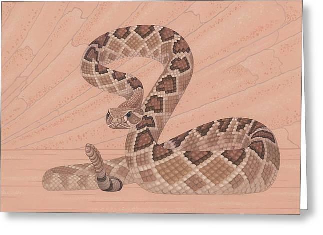 Snake Illustration Greeting Cards - Western Diamondback Rattlesnake Greeting Card by Nathan Marcy